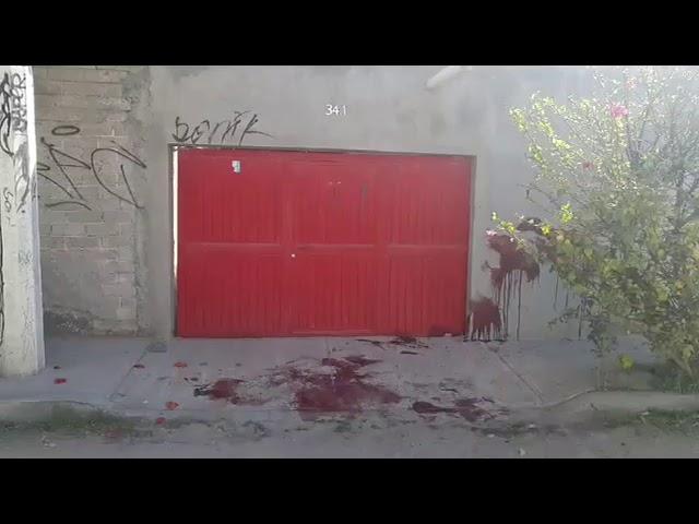 Reporte de homicidio en la colonia Libertadores de América