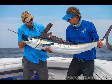 "Into The Blue: ""White Marlin Open"" 2014 : Season 6 Episode 4"