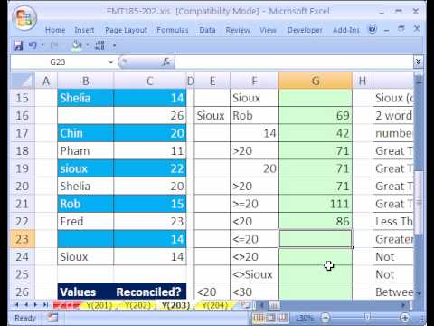 Excel Magic Trick #203: SUMIF function formula 21 Examples of Different Criteria