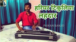 Hariyar Tikuliya Lahardar Tikuli Satale Bani Banjo Cover.PAWAN BANJO (BULBUL TARANG)टिकुली सटले बानी