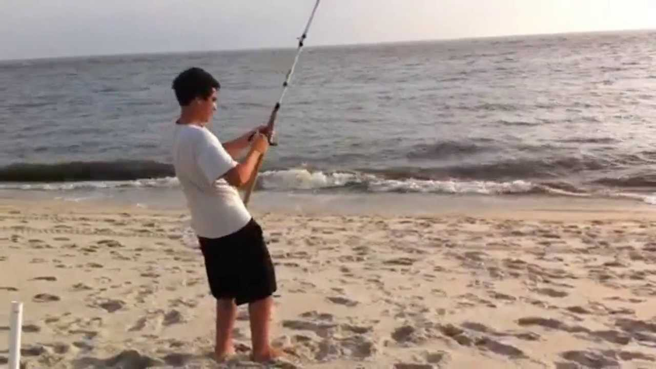Sharks fishing the nj surf youtube for Surf fishing nj