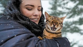 BENGAL CAT reacts to FIRST SNOWFALL!! WE WERE SUPRISED!