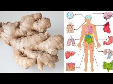 health-benefits-of-ginger---what-is-ginger-good-for?