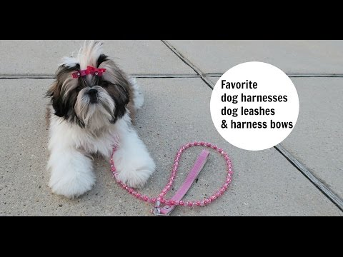 FAVORITE DOG HARNESSES, DOG LEASHES AND HARNESS BOWS