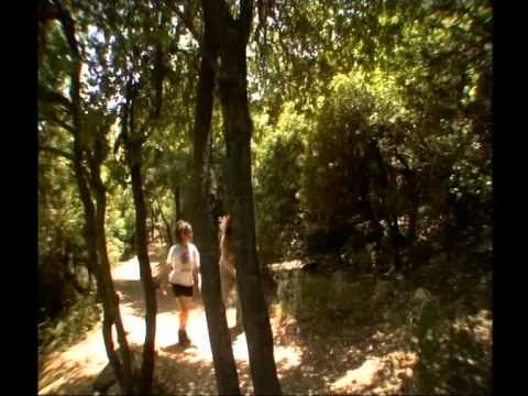 טיפ טיול בשמורת טבע הר מירון