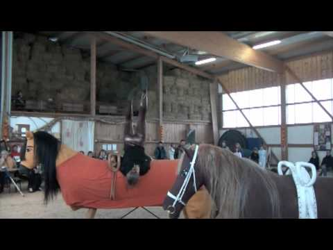 libre sur le cheval d 39 ar on coupe de st nicolas 2010 voltige fanny et fanny youtube. Black Bedroom Furniture Sets. Home Design Ideas