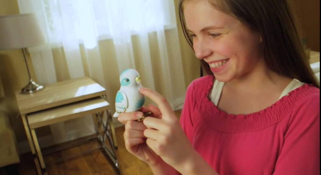 Little live pets vögel serie tv commercial youtube
