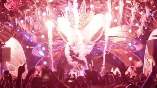 Dimitri Vegas & Like Mike with David Guetta at Ushuaïa Ibiza to perform