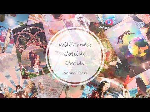 開箱  荒野碰撞神諭卡 • Wilderness Collide Oracle // Nanna Tarot