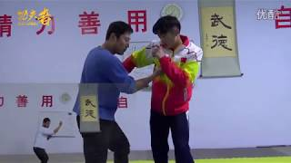 powerful kungfu fighting system: xingyi pi