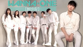 Wanna One (워너원) - 봄바람 (Spring Breeze) / Dance Cover.
