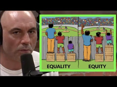 Equity vs  Equality | Joe Rogan & Tim Pool