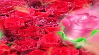 Цыганская Свадьба Паша и Мария г  Пенза 2 часть