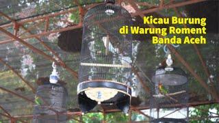 Kicau Burung di Warung Roment, Aceh