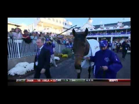 2011 Breeders' Cup Mile Turf - Court Vision + Pre & Post Race