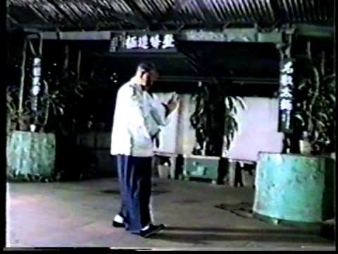Wu Style Tai Chi performed by son of Cheng Wing Kwong