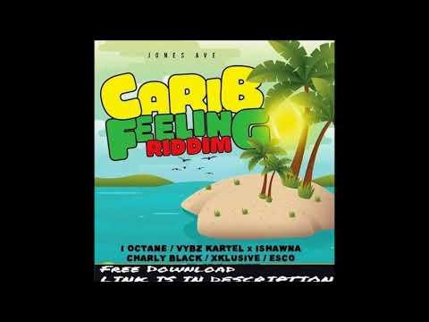 CARIB FEELING RIDDIM(Jones Ave Records)