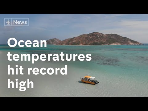 Extreme weather: World's ocean temperatures hit record high in 2020