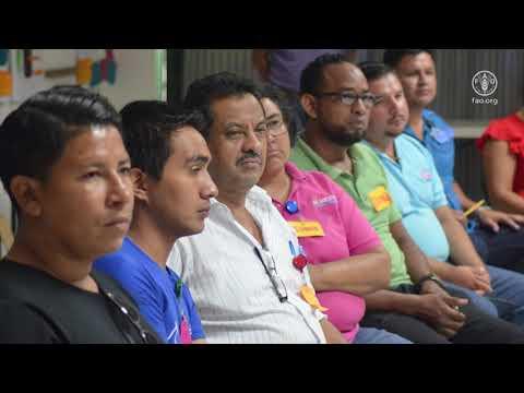 Programa Formación de Capacidades (PFC) en Nicaragua