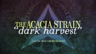 Play Dark Harvest