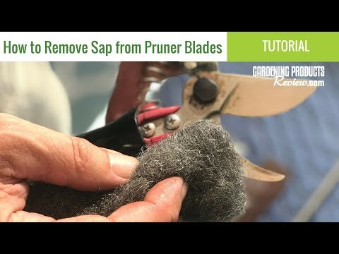 How to Clean Pruner Blades (and Remove Sap!) | Gardening Products Review
