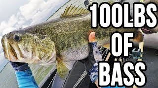 The B Team ~100lbs Bag of Bass in 1 Fishing Day??!!