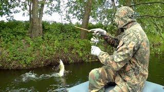 Download Река, где полно щуки и голавля. Рыбалка на спиннинг в июне 2018 Mp3 and Videos