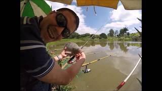 A Melhor Pescaria de 2014 - Samburá Cheio!