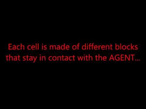 Terrorist Cell Organization