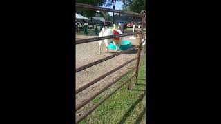 Master One Marketing Strategy At A Time (Canfield Fair 2018)