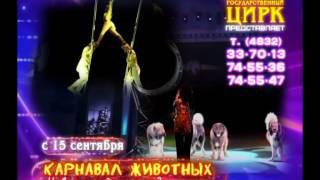 Новое цирковое шоу Династии Запашных «Карнавал» Брянский цирк