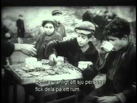 Shoah - Fakta om förintelsen  SWE