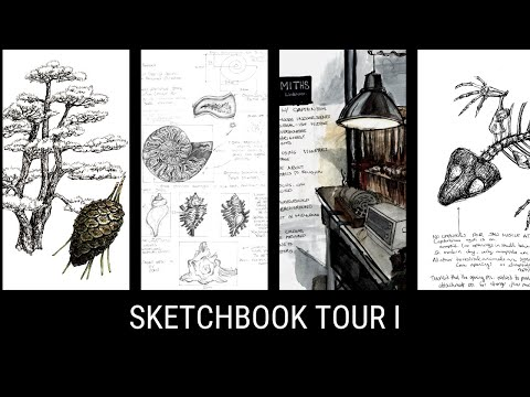 Sketchbook Tour I - A4 Nature Journal and Sketchbook (and Stillman and Birn Zeta Review)