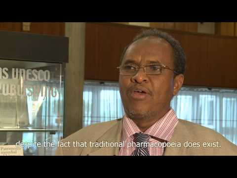 Why safeguard ICH? Answers from Djibouti