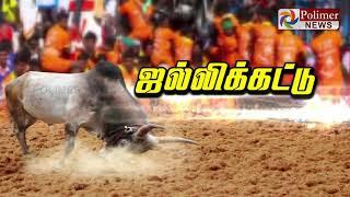 அசத்திய  அலங்காநல்லூர்  ஜல்லிக்கட்டு..!|Alanganallur Jallikattu 2020