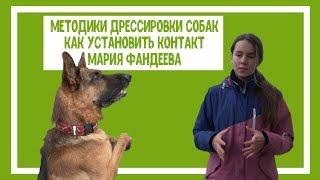 Методики дрессировки собак. Как установить контакт. Мария Фандеева