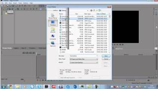 How to get rid of copyright (Sony Vegas)   viDuBzx