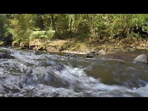 gemericik air sungai mengalir