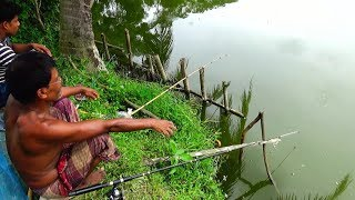 Best Ticket Fish Hunting | Awesome Fishing in West Bengal | traditional Sip fishing in the village