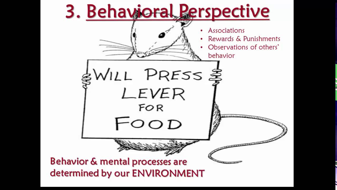 behavioural and cognitive psychological perspective The significance of behavioural learning  perspective the psychology  supposition myers argues is faulted for ignoring the importance of cognitive psychological.