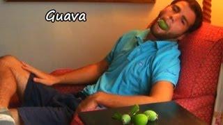 Gambar cover *Plant GuavasTree* +Enjoy Guava Pool Side Plants+Tasty+