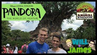 Trip to Disney's Pandora The World Of Avatar