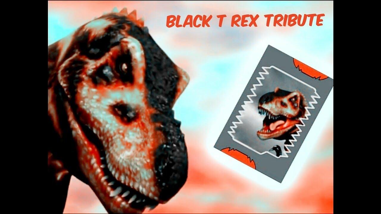 Rex Black Book