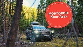 Путешествие в Азию. Монголия, Алтай граница, Кош-Агач часть 6. Toyota Land Cruiser
