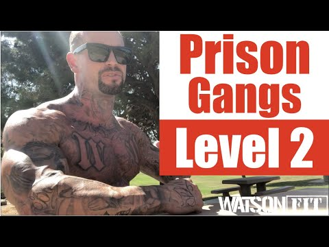 California Prison Gangs- Level 2