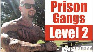 California Prison Gangs- Level 2
