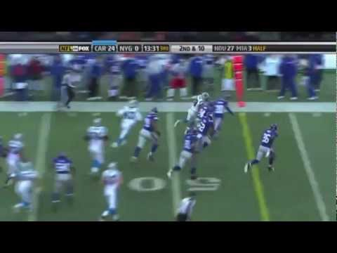 Double Trouble (Johnathan Stewart,Deangelo Williams) career highlights