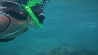 coreanita nadando abajo de agua, jugando con animalitos
