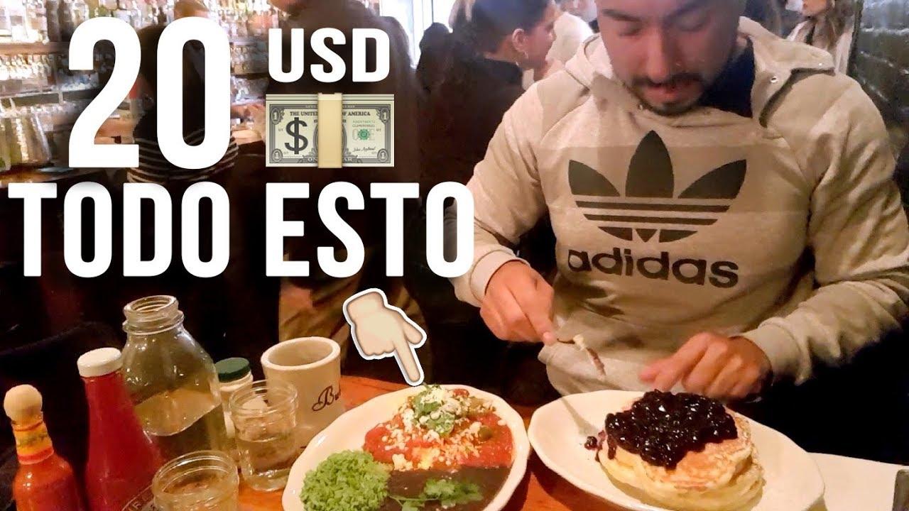 Comer barato en Nueva York </p>                     </div> <!--bof Product URL --> <!--eof Product URL --> <!--bof Quantity Discounts table --> <!--eof Quantity Discounts table --> </div> </dd> <dt class=
