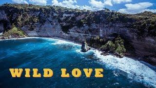 PIKA - WILD LOVE (Grey Killer prod.) / ПИКА - ДИКАЯ ЛЮБОВЬ смотреть онлайн в хорошем качестве бесплатно - VIDEOOO